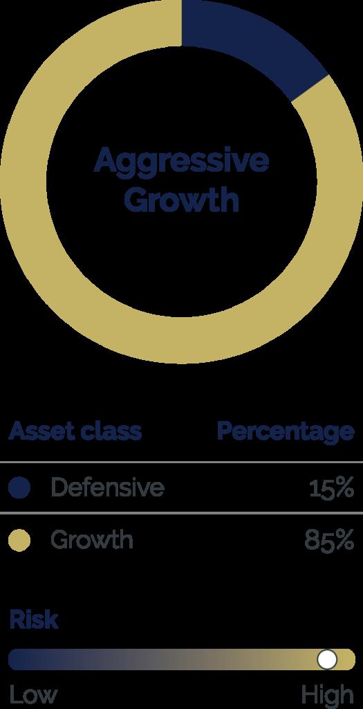 Six Park Aggressive Growth Portfolio